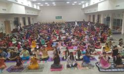Conducted Scientific Pranayama from 11-11-19 to 14-11-19